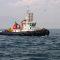 La Armada de México y Capitanía de Puerto buscan a cuatro pescadores de tiburón desaparecidos.