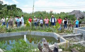 Programa Desarrollo Sustentable