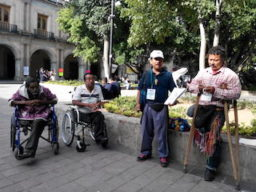 discapacidad3